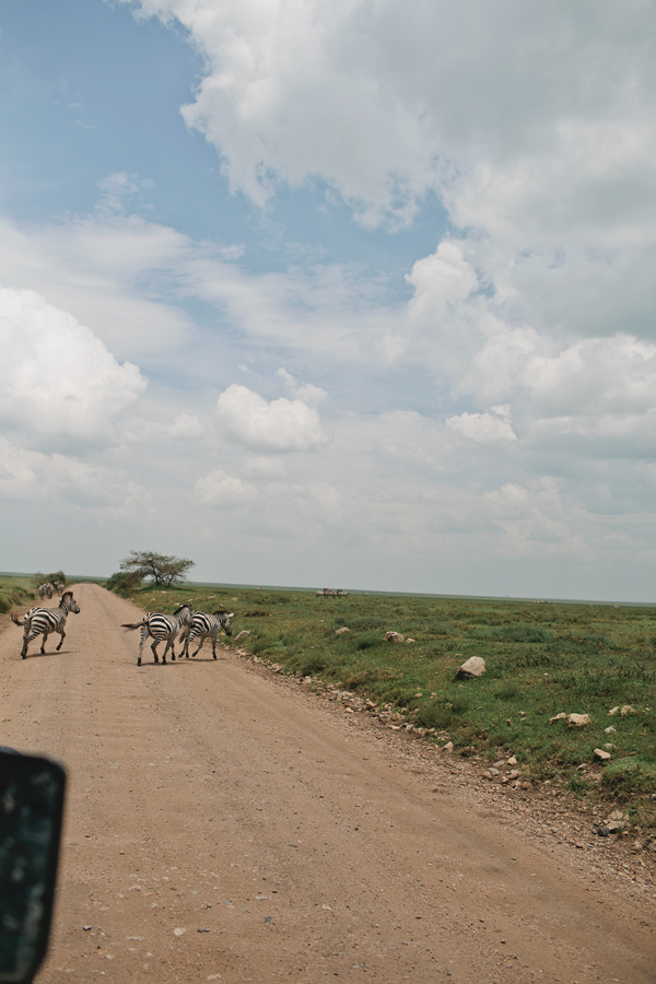 Tanzania-BLOG-04