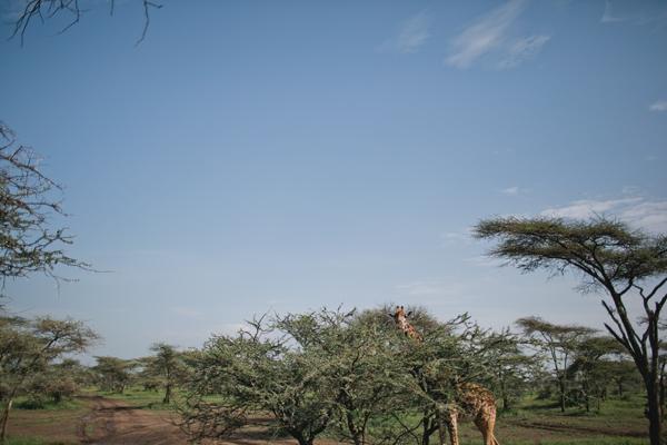 Tanzania-BLOG-05