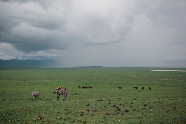 Tanzania-BLOG-09