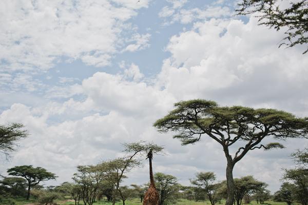 Tanzania-BLOG-14