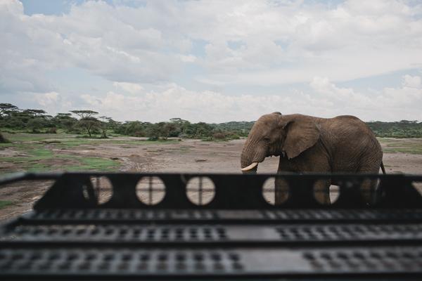 Tanzania-BLOG-15