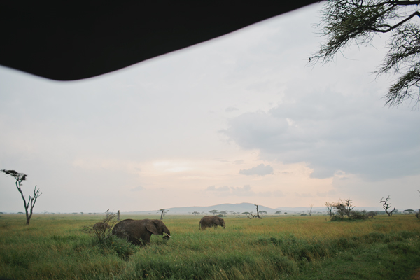 Tanzania-BLOG-33